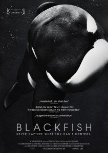 BlackFish_Plakat_A1_08_Layout 1