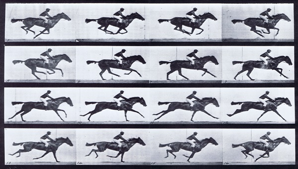 Plate_626_Horse_Annie_G_Galloping_Saddled_Clothed_Male_Rider